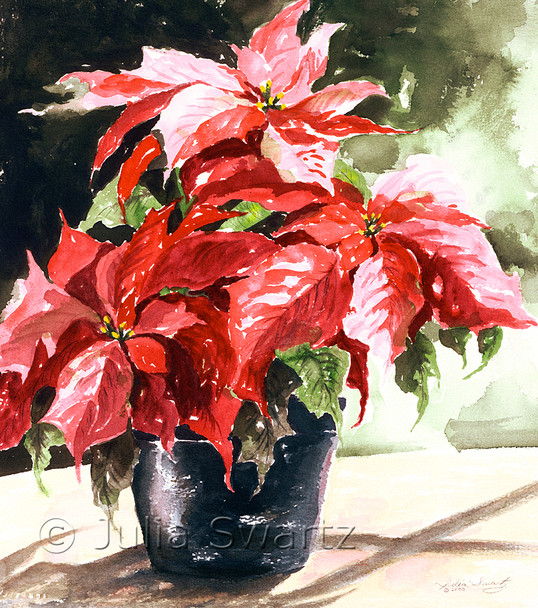 Note cards of Red Poinsettia watercolor painting