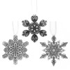 Winter Wonders Snowflake 3-Piece Ornament Set