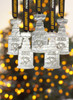 Stanley Cup Ornament from the Pittsburgh Penguins