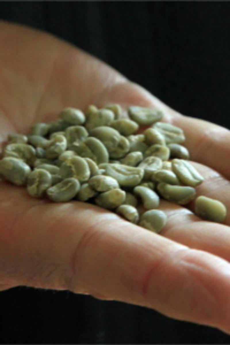 Colombia Fair Trade Organic Green Coffee Beans