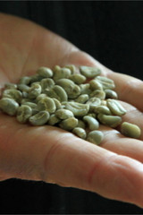 Decaffeinated Fair Trade Organic Green Coffee Beans