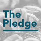 We are Taking the Price Transparency Pledge
