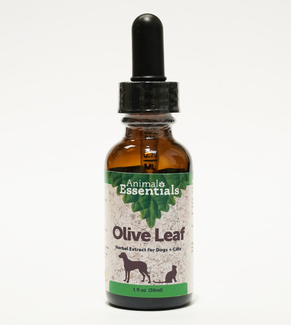 Olive leaf tincture for dogs and cats by Animal Essentials