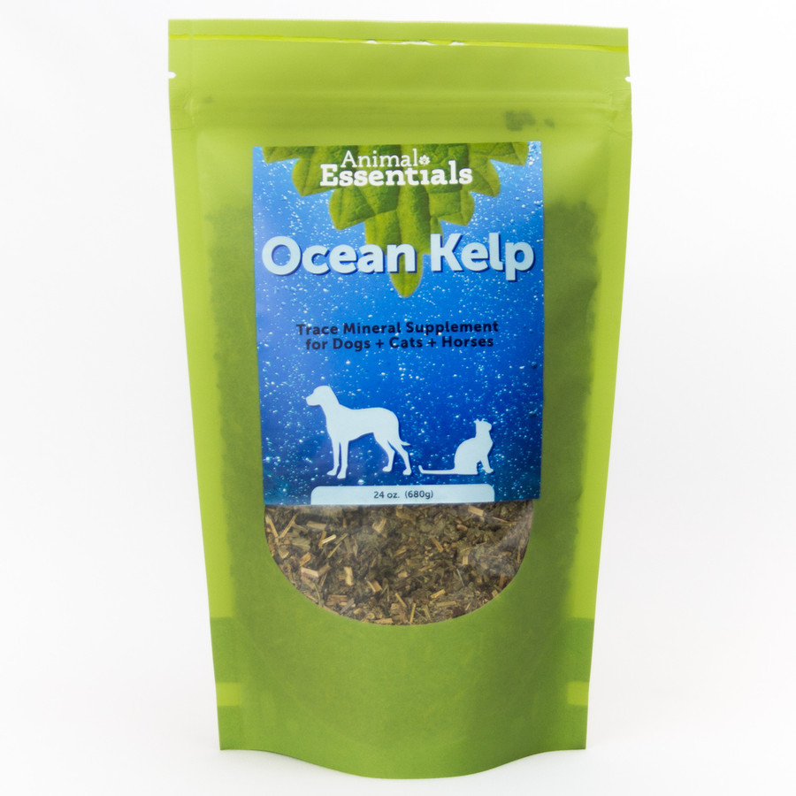 Organic Ocean Kelp 24 oz