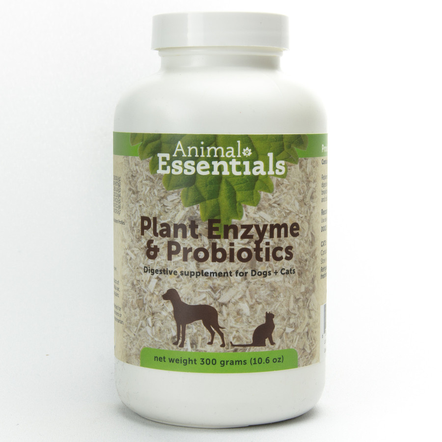 All natural digestive aid with plant enzymes and probiotics. This product assists in the digestion and absorption of nutrients which are necessary to maintain good health. It relieves the extra burden placed on the digestive system, as this product breaks down fats, carbohydrates, cellulose and protein. Enzyme and probiotic supplementation is a good preventive measure to ensure good health. No lactose, sugars, or preservatives.  Digestive enzymes are special types of protein molecules that catalyze the breakdown of food into components that can be utilized by the body. These proteins are not stored in the body but are released based on the anticipation aroma or actual presence of food in the digestive system. Because they are not stored they must be taken with each meal, preferably with the food. Animal Essential's enzymes contain a blend of plant and microbial produced enzymes. None of them are from animal sources.  Each enzyme is highly specific as to the class of food it works on and the temperature and pH of its effective range of activity. Animal derived enzymes will work in only one area of the digestive system, while plant and microbial enzymes work throughout the whole system, from mouth through the stomach into the intestines. As the body ages less enzymes are produced and supplementation is necessary to assure optimum health.  To maintain optimum health in an animal it needs to be fed an optimum diet, but also needs to have digestive efficiency necessary to assimilate the food ingredients. The digestive efficiency can be reduced by stress of any sort, excitement , anxiety (travel separation, working stress and so on). To insure optimum digestion and health we recommend the addition of this supplement to each meal. For optimum utilization the supplement should be added to the food and should be moistened shortly before feeding to be effective.  Since Animal Essential's enzymes are derived from plant and microbial sources they are active throughout the whole gastrointestinal tract not in a specific section, as animal derived enzymes are. These enzymes are active from pH of 3 to 9 and at a temperature of about 100 Degrees Fahrenheit. Animal derived enzymes either work in the stomach at a low pH or in the intestine at much higher pH. Since ours work over a broader range they are active longer in the system at reducing the food into usable components.  Available in 100g (approx. 25 tsps) or 300g (approx. 75 tsps) Powder