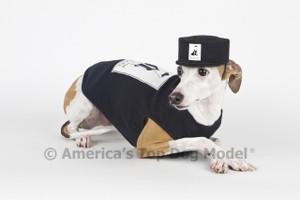 America's Top Dog Model Black Felt Signature Cap