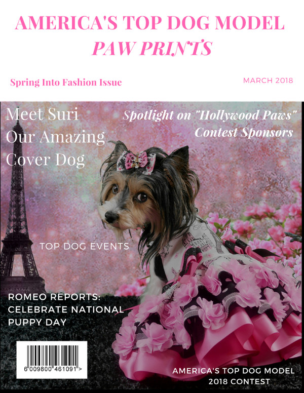 Spring Into Fashion: Styles For Your Dog