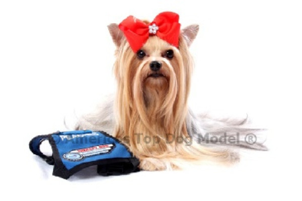 Meet Miss America Top Dog Model (R) 2015