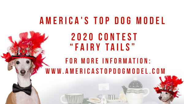 2020 Dog Model Contest - Virtual Casting Call