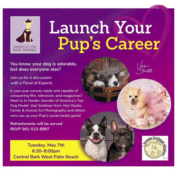 How to Launch Your Pup's Career