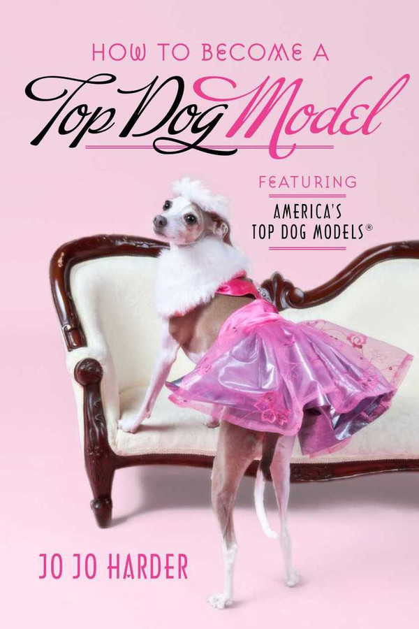 How to Become a Top Dog Model