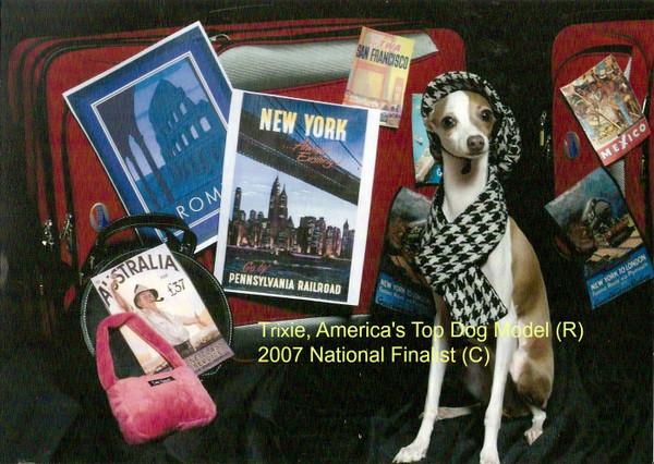 America's Top Dog Model 2017 Contest