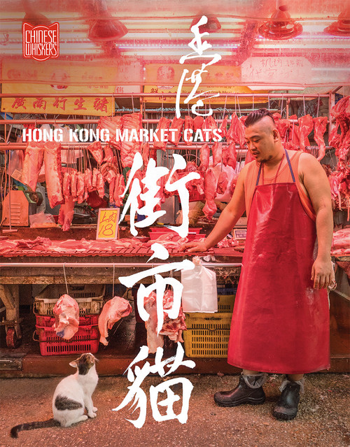 Hong Kong Market Cats 香港街市貓