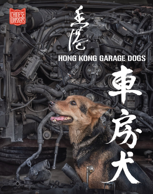 Hong Kong Garage Dog 香港車房犬