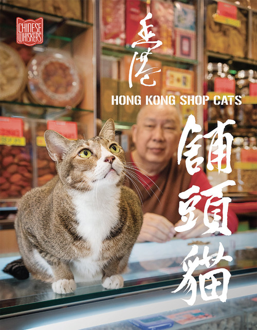 Hong Kong Shop Cats 香港舖頭貓