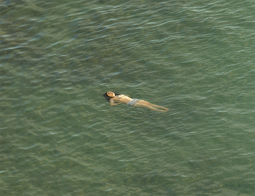 Richard Misrach:The Mysterious Opacity of Other Beings