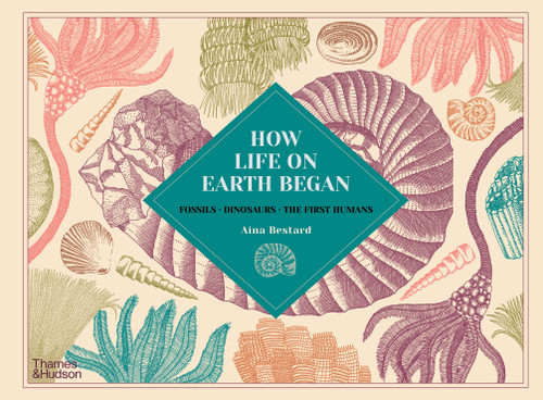 How Life on Earth Began: Fossils · Dinosaurs · The First Humans