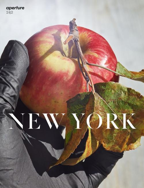 New York: Aperture 242