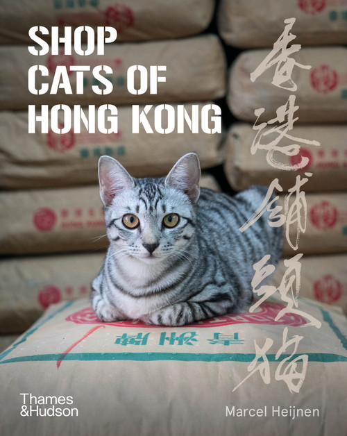 Shop Cats of Hong Kong