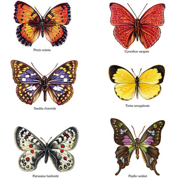 Butterflies Fusible Glass Waterslide Decal 3 sizes
