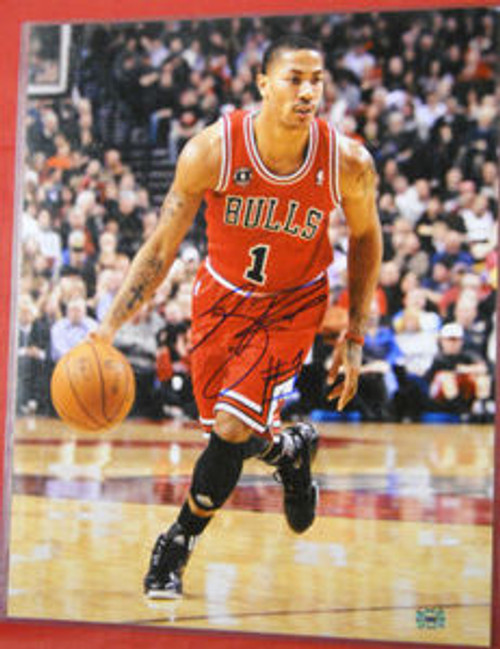 DERRICK ROSE AUTOGRAPHED CHICAGO BULLS 16X20 PHOTO AASH