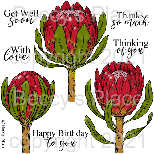 Proteas digital stamps