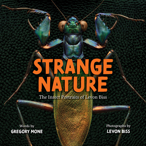 Strange Nature : The Insect Portraits of Levon Biss