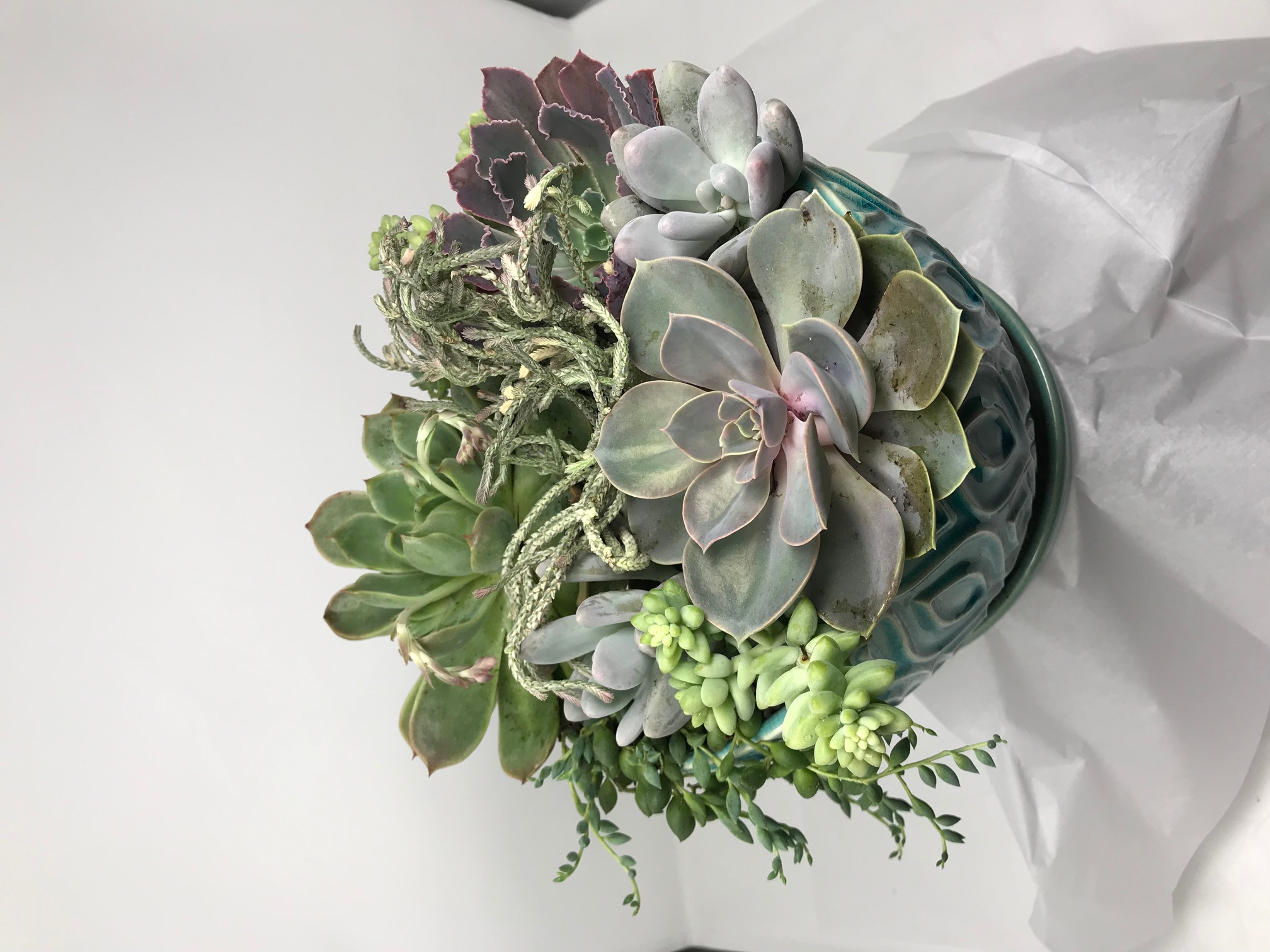 arrangement02.jpg