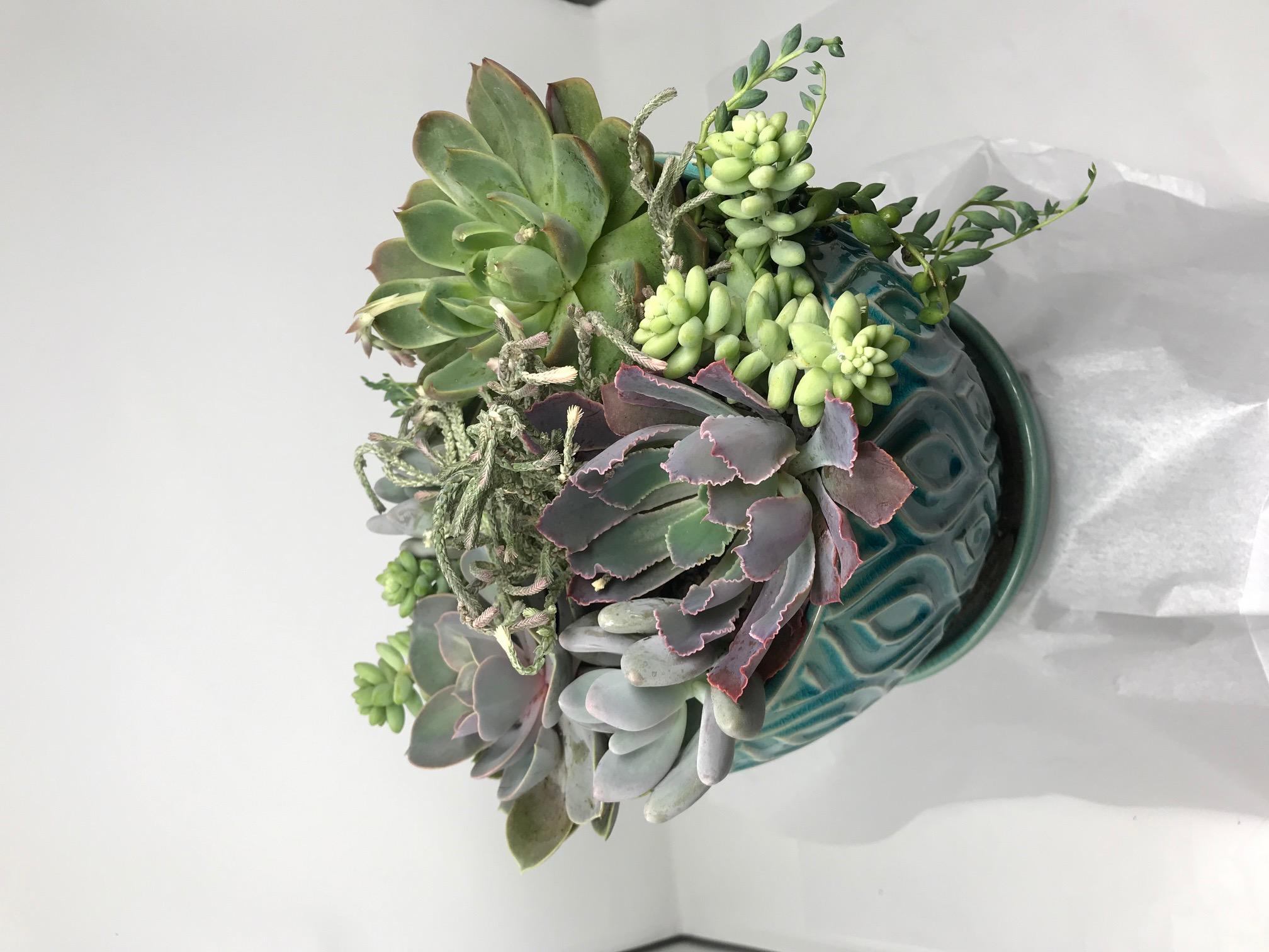 arrangement04.jpg