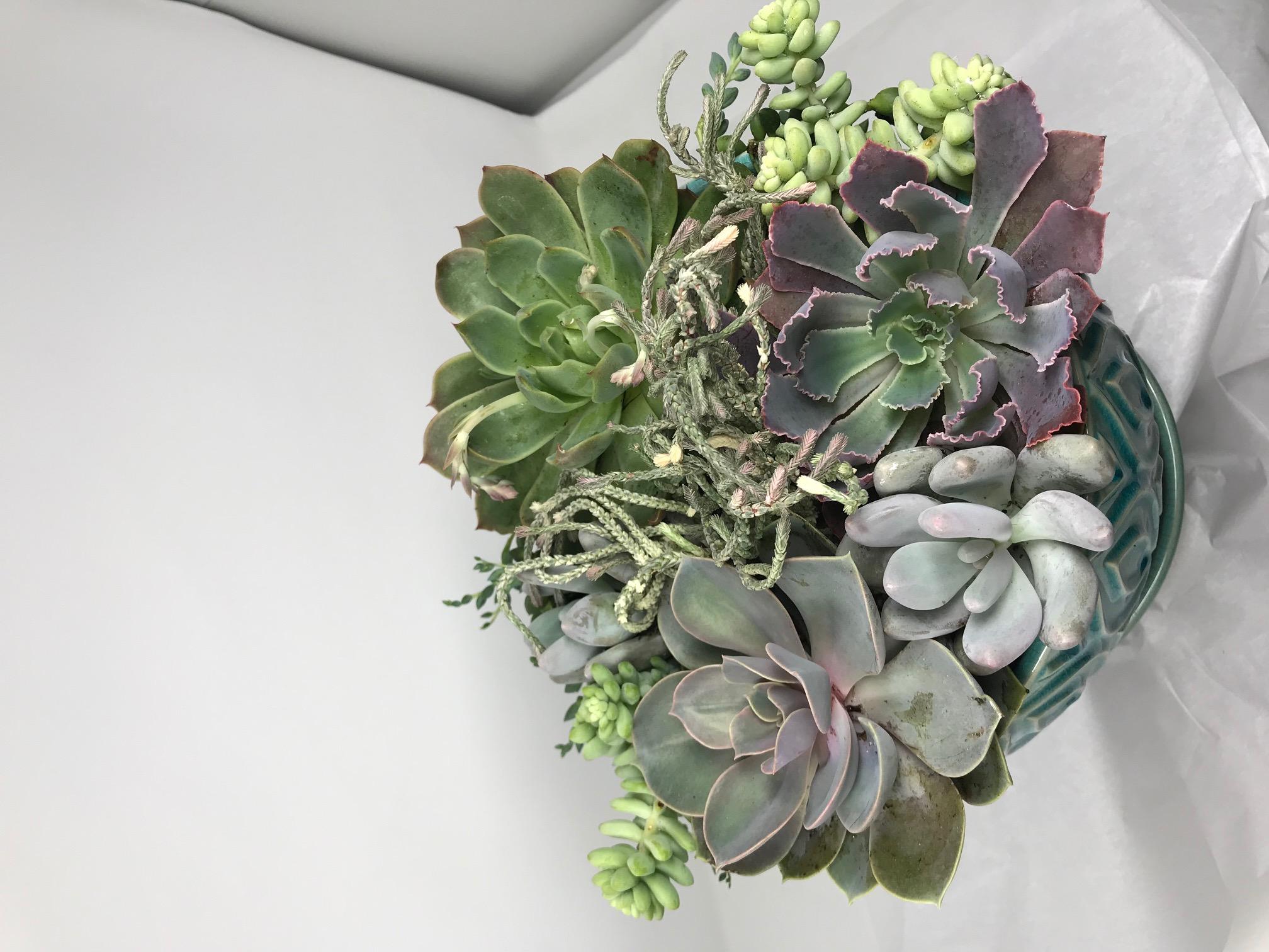 arrangement05.jpg