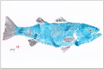Blue Gray Striper