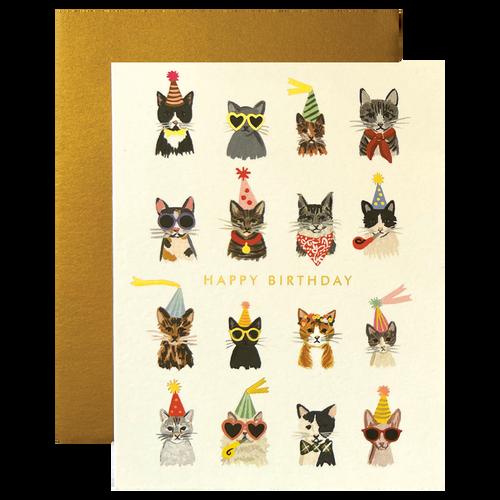 Cool Cats Birthday