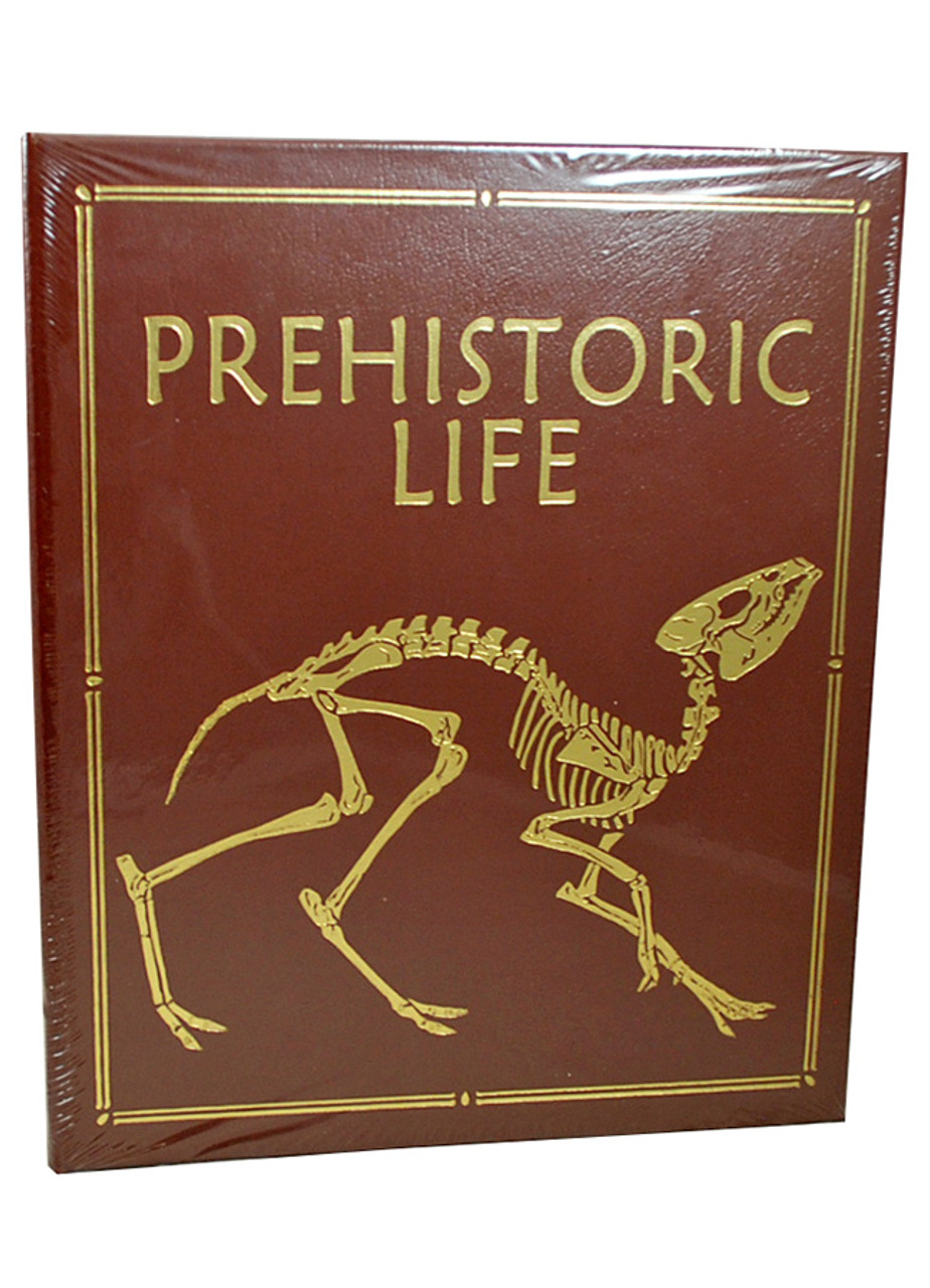 Book cover in front