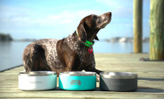 TOADFISH NON-TIPPING DOG BOWL (TEAL)