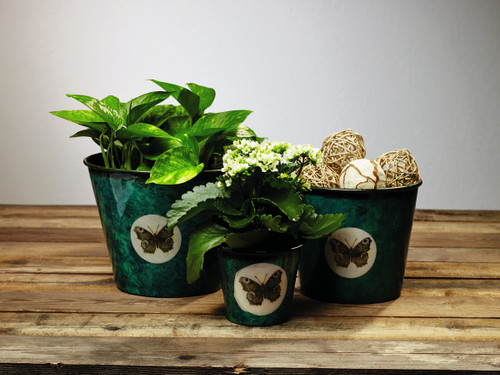Peacock Green Butterfly Planters - Set Of 3