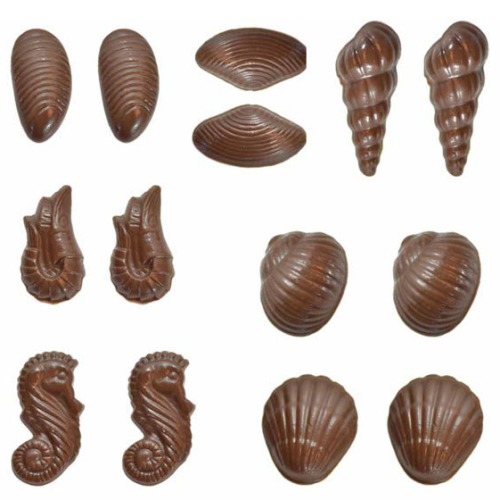 Plastic Chocolate Mold - Seashells 3D
