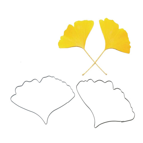 Tin Plate Cutter Set 2pc - Ginkgo/Maidenhair Fern