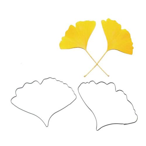 Ginkgo/Maidenhair Fern 2pc Tin Cutter Set