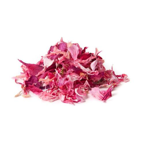 Pelargonium Pink 5g