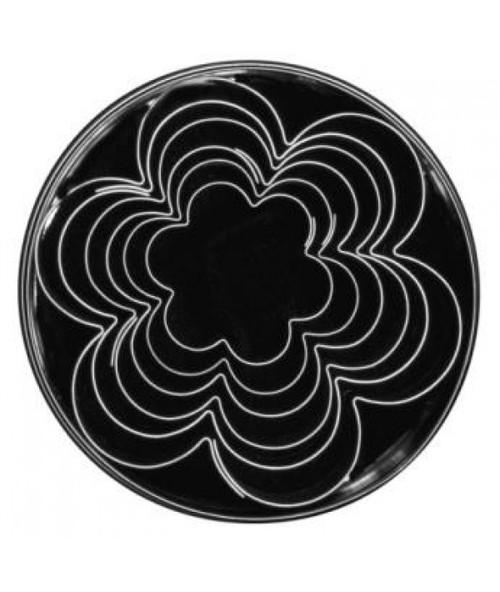 Loyal Tin Plate Cutter Set-BLOSSOM