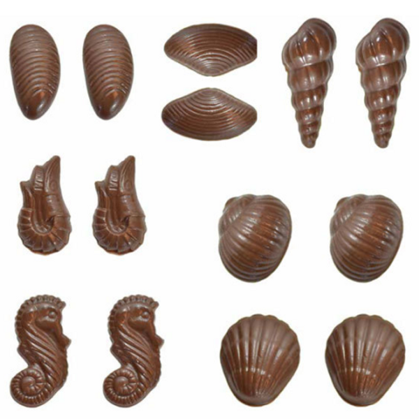 Chocolate Mould - Seashells 3D