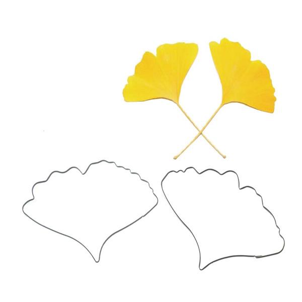 Tin Plate Cutter Set 2pc - Ginkgo/Maidenhair Fern