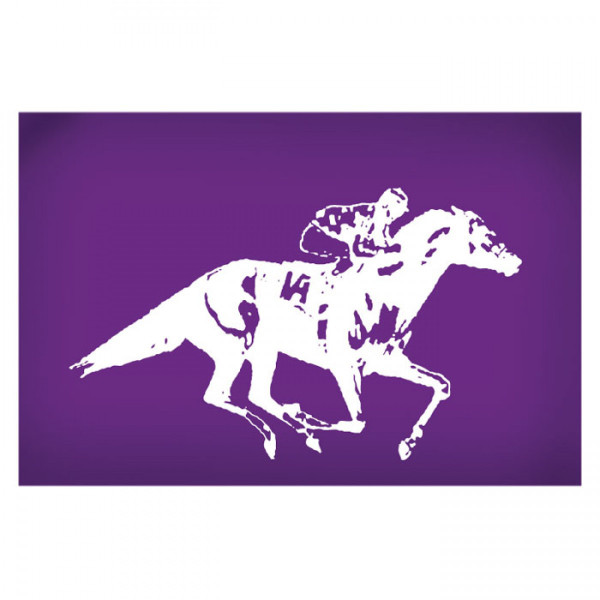 Mesh Cake Stencil - Racing Horse with Jockey