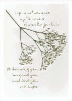 Baby's Breath Notecard