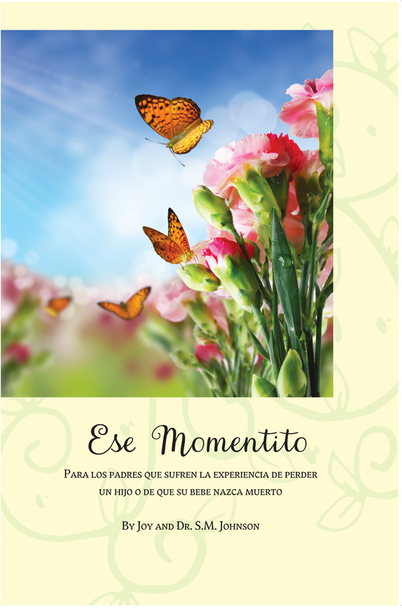 Ese Momentito (This Little While (Spanish)