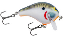 Tennessee Shad/Orange Belly