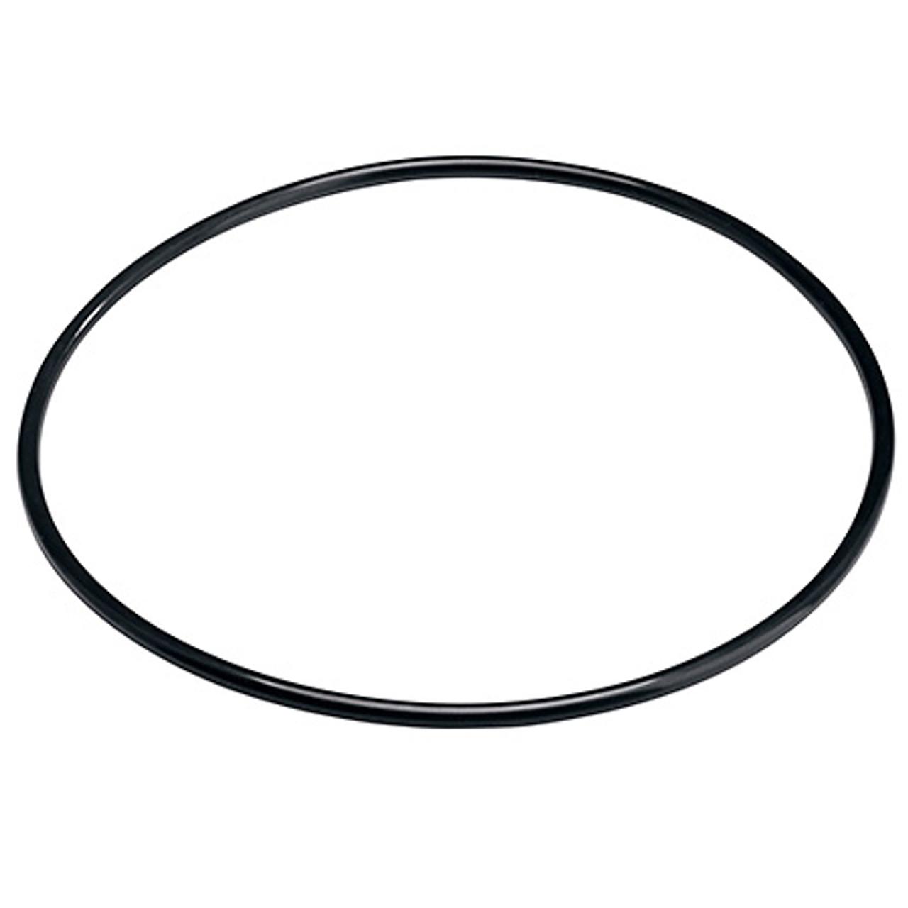 Pentair 151121 O-ring for Slimline Housings