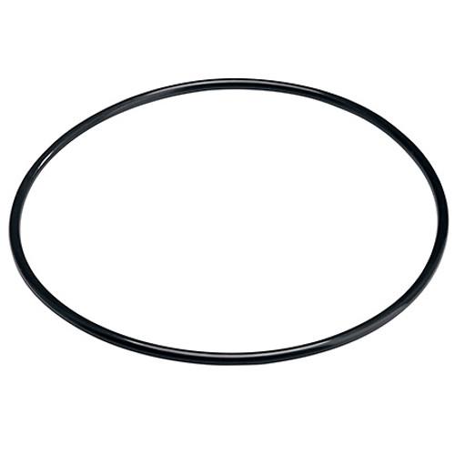 Pentek 151120 O-ring Buna-N for Pentek Standard Housings