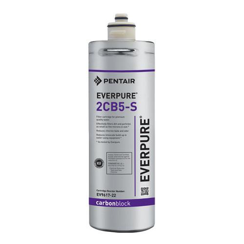 Everpure 2CB5-S EV9617-22 Replacement Filter Cartridge