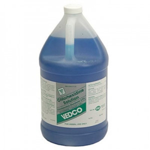 chlorhexidine 2 percent solution gallon